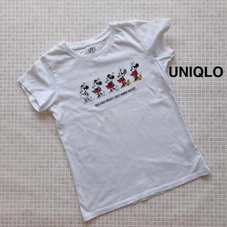 ユニクロ(UNIQLO)のTシャツ 140 ユニクロ UT セレブレイトミニー(Tシャツ/カットソー)
