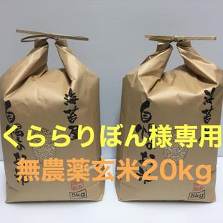 くららりぼん様専用 無農薬 コシヒカリ 玄米20kg(5kg×4)令和元年産(米/穀物)