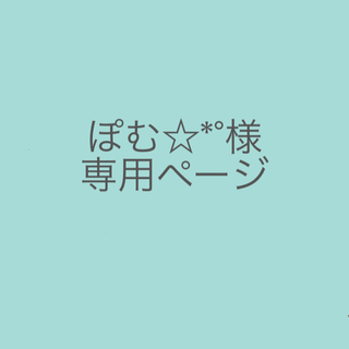 ぽむ☆*°様専用(アニメ)