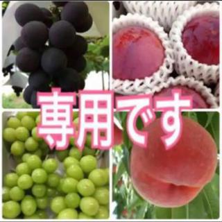 nanana様専用◎シャインマスカット (フルーツ)