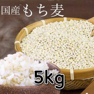 【こはく様専用】国産もち麦 5kg(米/穀物)