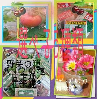 選べる5種類② 野菜の種 ハーブの種 有機種子 固定種 エディブルフラワー(野菜)