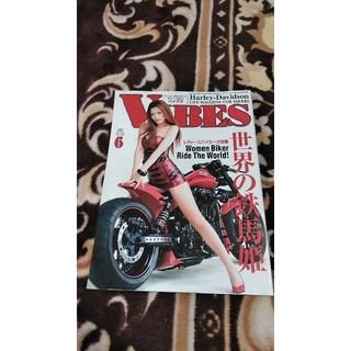 VIBES☆2009/6☆モデル=澄川ロア(車/バイク)