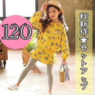 プティマイン(petit main)の【新品】花柄  セットアップ  上下セット 120 スカッツ 韓国子供服 女の子(Tシャツ/カットソー)