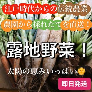 100サイズ【江戸時代から続く伝統農業】農園から直送☆旬の野菜詰め合せ