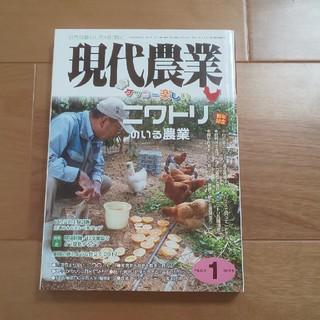現代農業 2017年 01月号(専門誌)
