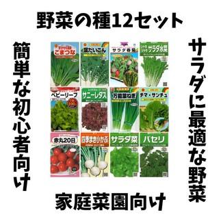 #1【すぐに何度でも収穫できるサラダ野菜の種12セット!】ベランダ、プランター(野菜)