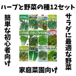 ハーブと野菜の種12セット(野菜)