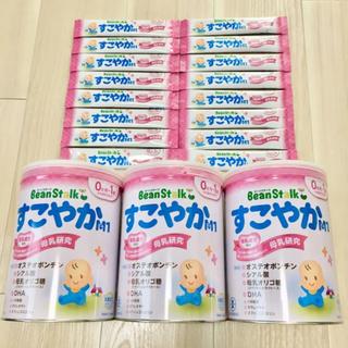 雪印メグミルク - すこやか 粉ミルク 大缶 800g 3缶 スティック 16本