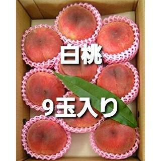 桃 白桃 正規品(フルーツ)