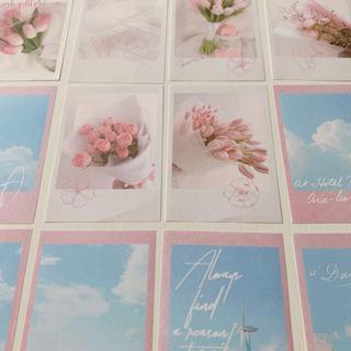 メッセージカード ピンク12枚