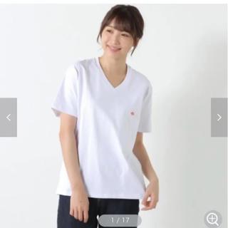 DANTON - ダントン M Tシャツ