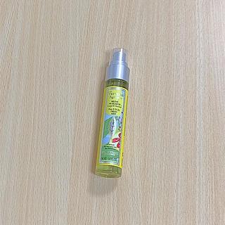 ロクシタン(L'OCCITANE)のロクシタン夏  人気シトラスヴァーベナ ミスト化粧水新品未開封(ユニセックス)
