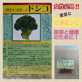 ブロッコリー ドシコ 野菜の種 ハーブの種 有機種子 固定種 在来種(野菜)