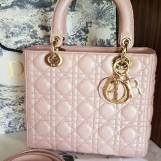 Christian Dior - 特価 Dior レディディオール ハンドバッグ