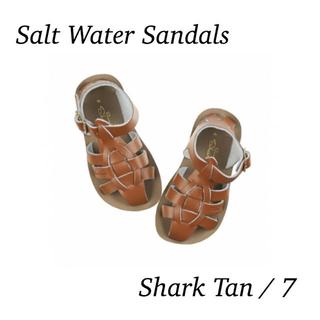 Salt Water Sandals ソルトウォーター / Shark Tan(サンダル)