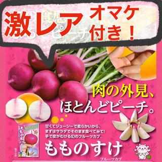 【オマケ付‼️】幻のサラダカブ もものすけの種 10粒 野菜 かぶ 家庭菜園 種(野菜)