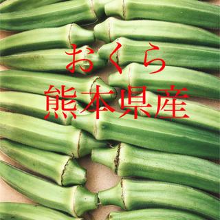 朝採り おくら(野菜)