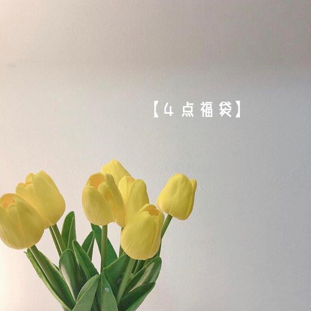 4点セット福袋 レディースのレディース その他(セット/コーデ)の商品写真
