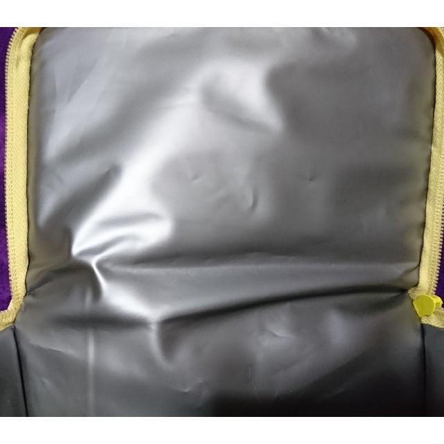 ダッフィー(ダッフィー)の香港ディズニーランド  保冷バック エンタメ/ホビーのおもちゃ/ぬいぐるみ(キャラクターグッズ)の商品写真