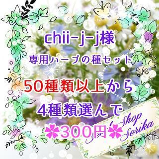 chii-j-j様専用 ハーブの種セット(その他)