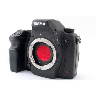 シグマ SIGMA SD1 Merrill ボディ