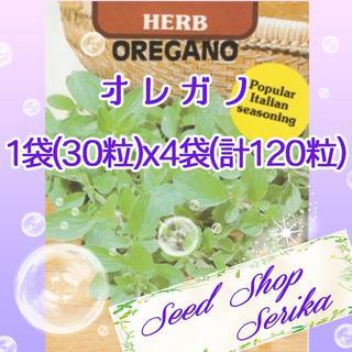 ③オレガノ 30粒×4袋(120粒) SeedShop♥SERIKA♥(その他)