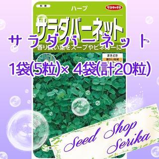 ⑬サラダバーネット 5粒×4袋(20粒) SeedShop♥SERIKA♥(その他)