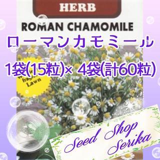 ⑮ローマンカモミール 15粒×4袋(60粒) SeedShop♥SERIKA♥(その他)