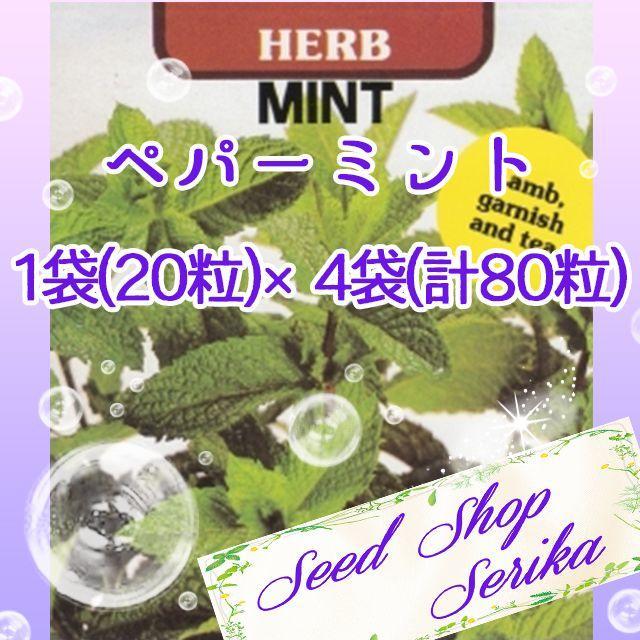 ⑳ペパーミント 20粒 ×4袋(80粒) ハーブ 種 ハンドメイドのフラワー/ガーデン(その他)の商品写真