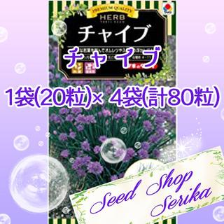 ㉒チャイブ 20粒 ×4袋(80粒) SeedShop♥SERIKA♥(その他)