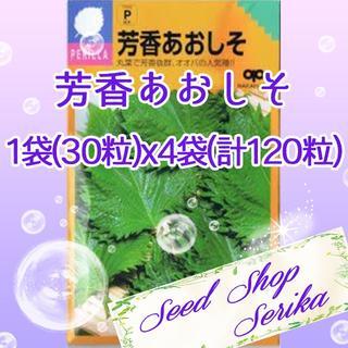㉘芳香あおしそ 30粒×4袋(120粒) SeedShop♥SERIKA♥(その他)