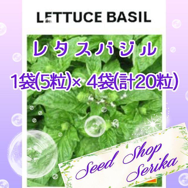 ㉚レタスバジル 5粒×4袋(20粒) ハーブ 種 ハンドメイドのフラワー/ガーデン(その他)の商品写真