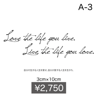 ティントタトゥーシール 英文【A-3】