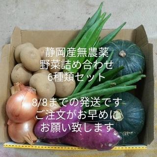 静岡産無農薬野菜詰め合わせ6種類セット(野菜)