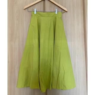 エヌナチュラルビューティーベーシック(N.Natural beauty basic)のN.natural  beauty basic スカート(ひざ丈スカート)