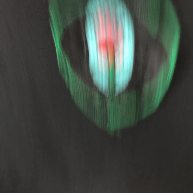 PAMEO POSE(パメオポーズ)のPAMEO Tシャツ 早い者勝ち レディースのトップス(Tシャツ(半袖/袖なし))の商品写真