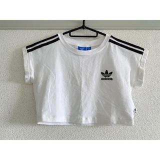adidas - 【adidasOriginal】クロップドTシャツ