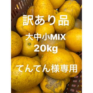 てんてん様専用 訳あり品 みかん 低農薬 宇和ゴールド20Kg   河内晩柑 (フルーツ)