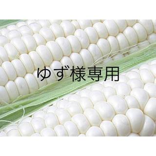ゆず様専用 ドルチェドリーム10本 雪の妖精10本 合計20本(野菜)