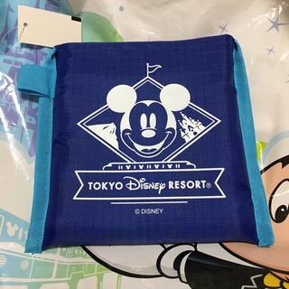Disney - ディズニーリゾート ショッピングバッグ エコバッグ