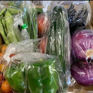 選べる野菜セット80サイズ