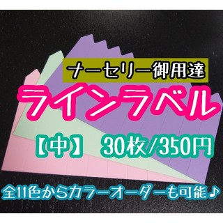 カラー オーダー可◎30枚◎ (中)  3色 ラインラベル 園芸ラベル(その他)