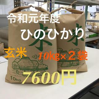 令和元年度 ひのひかり 玄米10㎏×2袋 もちもち 精米可(米/穀物)