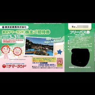 東京サマーランド 株主優待 フリーパス 2枚 お盆も可能です(遊園地/テーマパーク)