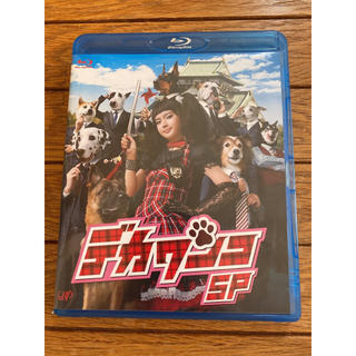 ニュース(NEWS)のドラマ「デカワンコSP」Blu-ray(TVドラマ)