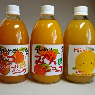 愛媛県産ストレート果汁(みかん、しらぬい、きよみ、あまなつ)4種類12本500㎜
