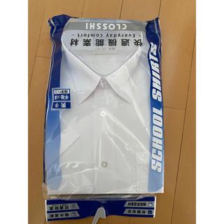 シマムラ(しまむら)のスクールシャツ半袖 165A 未使用(シャツ)