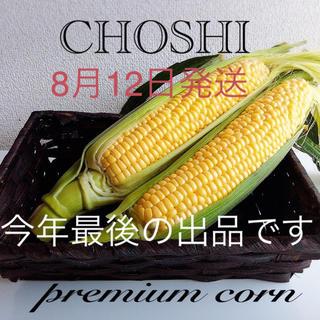 千葉県産甘ーいトウモロコシ 冷蔵便発送(野菜)