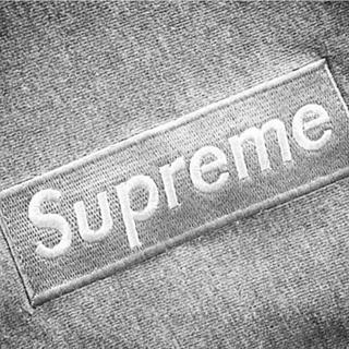 Supreme - 【中古】supreme BOX LOGO hoodie gray×silver
